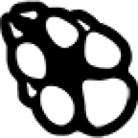 Bot Commands   FaunaFocus