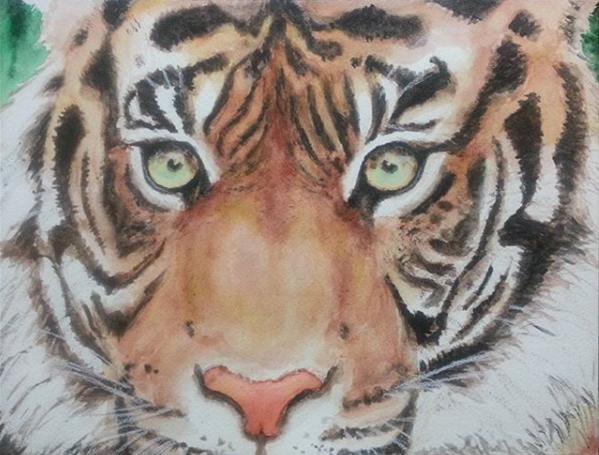 Tiger Host Train
